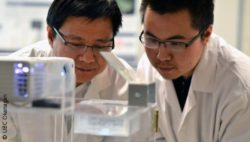 Image: UBC researcher Keekyoung Kim and UBC student Zongjie Wang working in a lab; Copyright: UBC Okanagan