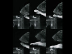 Photo: Grasping sequence of rats in comparison