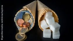 Image: Two ice cream cones next to each, one is filled with sugar, one with money; Copyright: panthermedia.net/elenachaykina