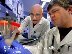 Photo: Two male scientists working in a lab