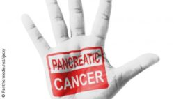 "Image: Image shows red wiriting ""pancreatic cancer"" pictured on a hand; Copyright: Panthermedia.net/ijacky"