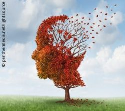Image: Autumn tree on a meadow with leaves in the shape of a head, which back is already leafless; Copyright: panthermedia.net/lightsource