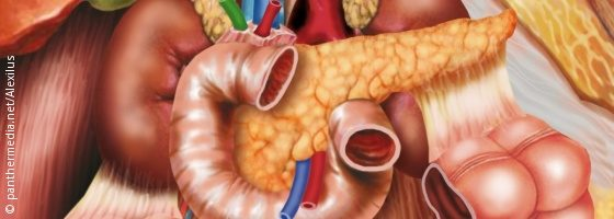 Graphic: The pancreas and the organs surrounding it; Copyright: panthermedia.net/Alexilus