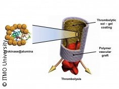 Graphic: Function of a blood clot dissolving graft
