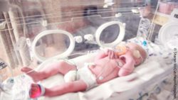 Image: premature baby in an incubator; Copyright: Sharon McCutcheon/Unsplash