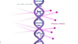 Image: Graphical representation of the effect of photons on the DNA of germs; Copyright: by UVentions