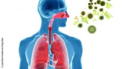 Image: image of a human body with highlighted lungs and respiratory tracts, in front of it fly allergens; Copyright: panthermedia.net/ingridat