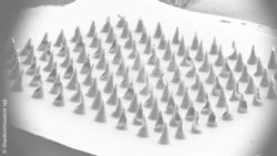 Image: Black and white microscope image of a patch with a spiky surface; Copyright: Khademhosseini lab