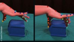 Image: Detailed video-based recording of the movement of all finger joints of a hand when gripping an object; Copyright: Swathi Sheshadri