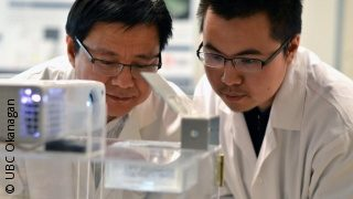 Image: UBC researcher Keekyoung Kim and UBC student Zongjie Wang working in a lab ; Copyright: UBC Okanagan