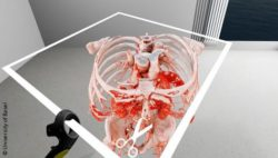 Image: A virtual reality image of the human skeleton and blood vessels; Copyright: University of Basel