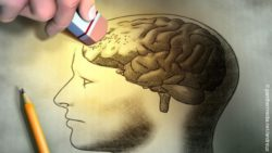 Image: pencil sketch of a human head with brain which is erased by an eraser; Copyright: panthermedia.net/andreus