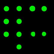 Photo: Green dots are visible on a black background