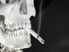 Photo: Skull with cigarette