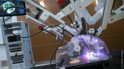 Image: A surgical robot with several arms performs surgery at a model of the human abdomen; Copyright: Ricardo Carrasco III
