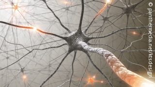 Image: Graphic of a neuron, that is connected with many other neurons via synapses. The synapses are glowing at several points; Copyright: panthermedia.net/ktsdesign