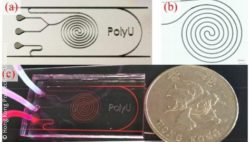 Photo: Fiber optic biosensor-integrated microfluidic chip