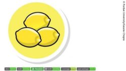 Image: three lemons: Drug Protein Lemon System; Copyright: Purdue University/Gaurav Chopra