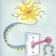 Photo: Illustration of a neuron and a switch