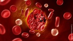 Image: blood cells in a blood vessel; Copyright: panthermedia.net/Eraxion