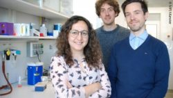 Image: The MPI team: Noelia Díaz, Kai Kruse and Juanma Vaquerizas; Copyright: MPI Münster