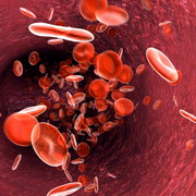 Photo: Graphic of blood cells