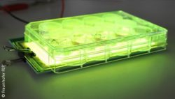 Image: Green OLED light during physical stimulation of cells (OLED and cell culture plate) Copyright: Fraunhofer FEP