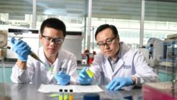 Image: Prof Liu Xiaogang (right) and Dr Chen Qiushui (left) ; Copyright: National University of Singapore