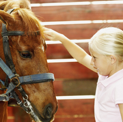 Photo: Child and horse