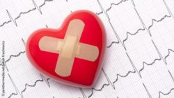Implanted heart patch could limit muscle damage after heart