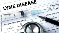 Image: The title Lyme Disease on a paper and a stethoscope; Copyright:panthermedia.net / adiruch