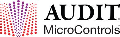 AUDIT MicroControls, Inc.