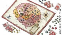 Image: A game board whith a brain painted on it. Around it lie some cards and pieces; Copyright: KU Leuven - Joris Snaet