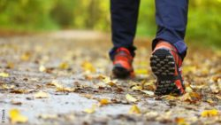 Image: pair of legs during walking; Copyright: IStock