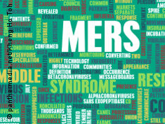 Graphic: The word MERS surrounded by other words