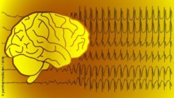 Image: Brainwaves; Copyright: panthermedia.net / drnn