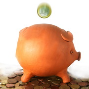 Photo: piggybank, with money all around