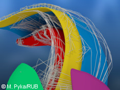 Graphic: 3D image of the hippocampus of a rat