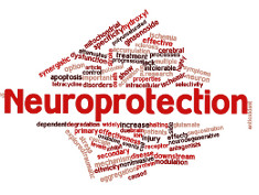 Photo: Neuroprotection
