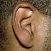 An ear of a man