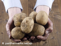 Photo: Two hands holding potatoes
