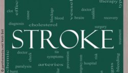 "Image: The word ""stroke"" (center) and other words like ""arteries"", ""brain"" or ""diagnosis"" are written on a blackboard; Copyright: panthermedia.net/Keith Bell"