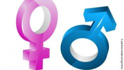 Image: a pink female gender symbol next to a blue male gender symbol; Copyright: panthermedia.net/get4net