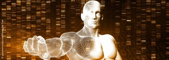 Image:computer generated model of a human body, consisting a white grid; Copyright: panthermedia.net/Kheng Ho Toh