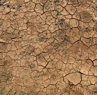 Picture: Dried out earth