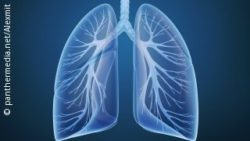 Image: Blue graphic of lungs; Copyright: panthermedia.net/Alexmit