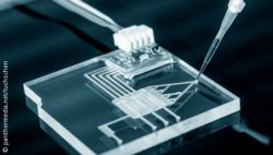 Image: Microfluidic chip; Copyright: panthermedia.net/luchschen