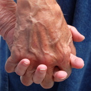 Photo: Folded hands of an old person