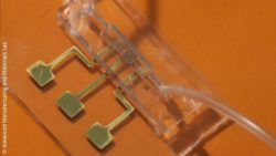 Image: A transparent chip; Copyright: Advanced Manufacturing and Materials Lab