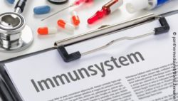 "Image: files with the word ""Immunsystem"" written on it; Copyright: panthermedia.net/Boris Zerwann"